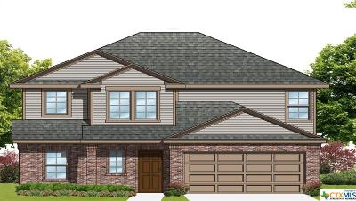 Seguin Single Family Home For Sale: 1553 Doncaster Court