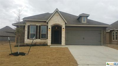 Bell County, Coryell County, Lampasas County Single Family Home For Sale: 8218 Northgate Loop