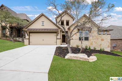 San Antonio Single Family Home For Sale: 1719 Roaring Fork