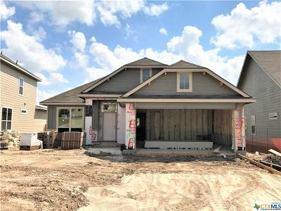 Bell County, Coryell County, Lampasas County Single Family Home For Sale: 1301 Amber Dawn Drive