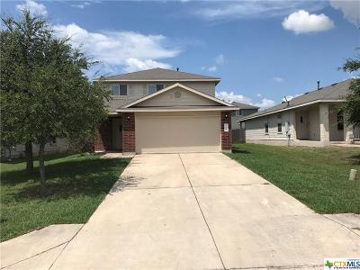Kyle Single Family Home For Sale: 165 Opal Lake Drive