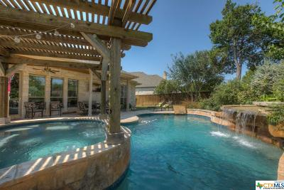 New Braunfels Single Family Home For Sale: 257 Arendes