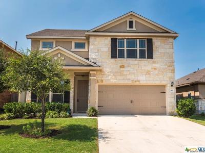 Buda Single Family Home Pending Take Backups: 390 Wincliff
