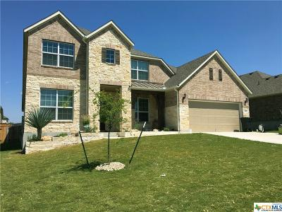 Harker Heights Single Family Home For Sale: 811 Green Meadows
