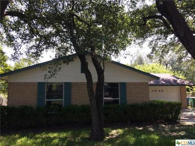 San Antonio Single Family Home For Sale: 1006 Cerro Alto Drive