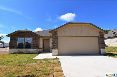 Bell County Single Family Home For Sale: 3704 Flatrock Mountain