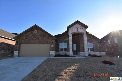 Killeen Single Family Home For Sale: 2804 John Helen Drive