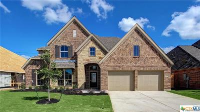 Seguin Single Family Home For Sale: 2925 Countryside Path