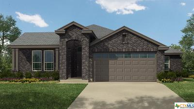 New Braunfels Single Family Home For Sale: 356 Lillianite