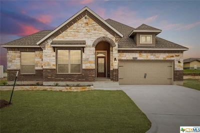 Belton Single Family Home For Sale: 3015 Trinity