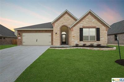 Belton Single Family Home For Sale: 3106 Trinity