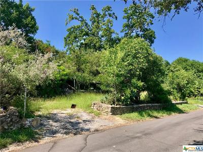 San Marcos Single Family Home For Sale: 1000 Advance Street