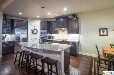 Georgetown Single Family Home For Sale: 201 Seminole Canyon