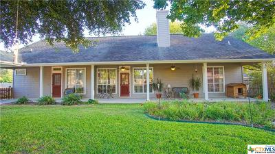 Seguin Single Family Home For Sale: 368 Las Brisas Boulevard