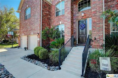 Round Rock Single Family Home For Sale: 720 Rosemount Drive