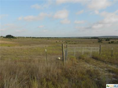 Bell County, Burnet County, Coryell County, Lampasas County, Mills County, Williamson County, San Saba County, Llano County Residential Lots & Land For Sale: 995 Cr 2136 Land #7