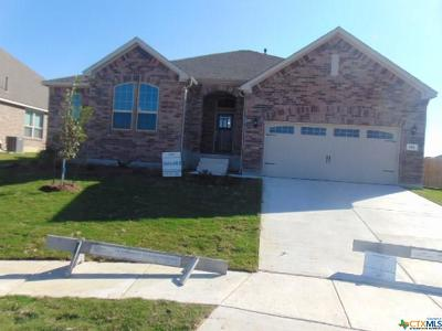 New Braunfels Single Family Home For Sale: 891 Maroon Street
