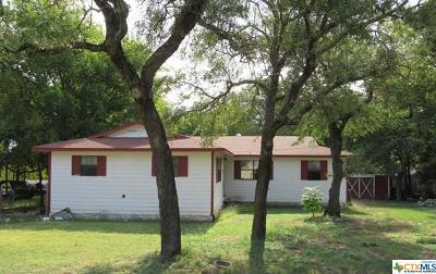 Belton Single Family Home For Sale: 1143 Airdale Road