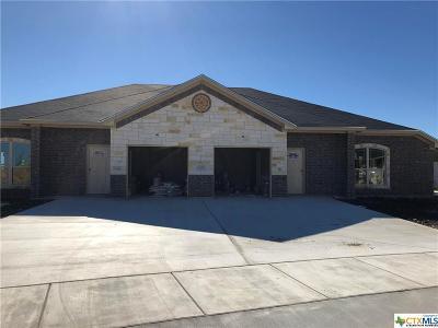 Killeen Multi Family Home For Sale: 203 Sladecek Drive #A & B