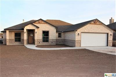 Belton Single Family Home For Sale: 3012 Mystic Mountain