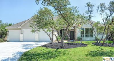 San Antonio Single Family Home For Sale: 1134 Silent