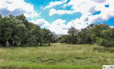 San Marcos Residential Lots & Land For Sale: 901 Mountain Drive
