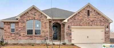 New Braunfels Single Family Home For Sale: 2060 Tejas Pecan
