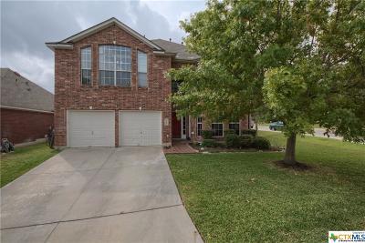 San Antonio Single Family Home For Sale: 1334 Arrow Bow