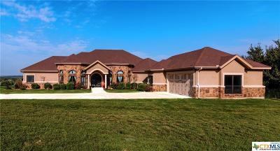 Salado Single Family Home For Sale: 16080 Fm 2484