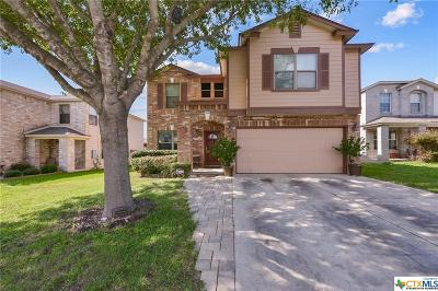 San Marcos Single Family Home For Sale: 203 Valero