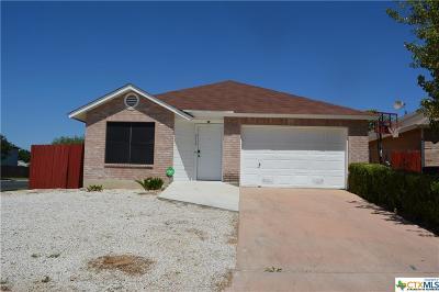San Antonio Single Family Home For Sale: 9759 Frost Plain