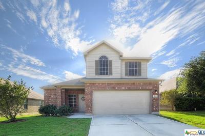 Cibolo Single Family Home For Sale: 213 Bareback