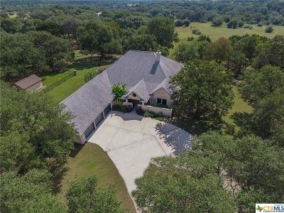 Driftwood TX Single Family Home For Sale: $550,000