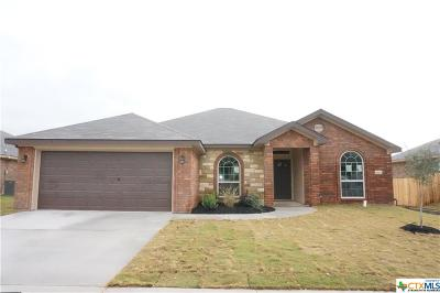 Bell County, Coryell County, Lampasas County Single Family Home For Sale: 6802 Catherine Drive