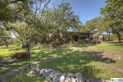 New Braunfels Single Family Home For Sale: 7081 Wegner