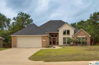 Belton Single Family Home For Sale: 2507 Red Valley Drive
