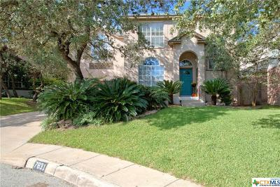 San Antonio Single Family Home For Sale: 7831 Braun Way