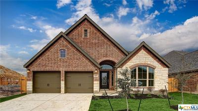 San Antonio Single Family Home For Sale: 14415 Bald Eagle Lane