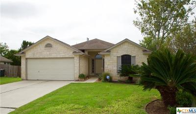 Hays County Single Family Home For Sale: 1061 Knox