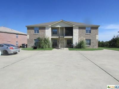 Harker Heights Multi Family Home For Sale: 417 Brittney Way