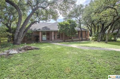 San Marcos Single Family Home For Sale: 110 Turkey Hollow