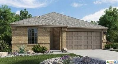 New Braunfels Single Family Home For Sale: 166 Meadow Path