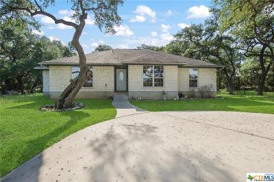 New Braunfels TX Single Family Home For Sale: $355,000