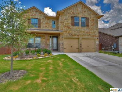 Liberty Hill TX Single Family Home For Sale: $337,500