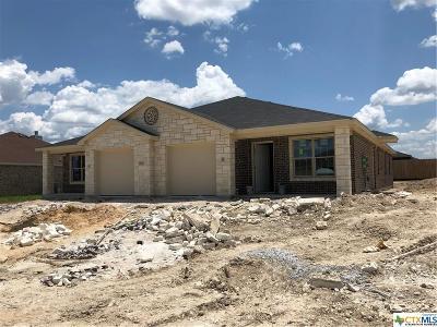 Killeen Multi Family Home For Sale: 1204 Vanguard Lane