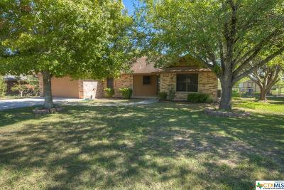 New Braunfels Single Family Home For Sale: 391 Skytrail Drive