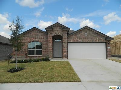 Killeen Single Family Home For Sale: 5401 Two Brothers Lane