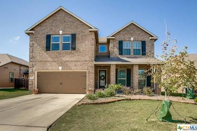 New Braunfels Single Family Home For Sale: 124 Ruger Path