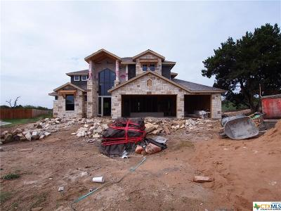 Georgetown TX Single Family Home For Sale: $335,000