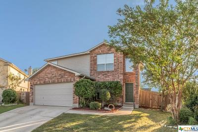 New Braunfels TX Single Family Home For Sale: $203,000